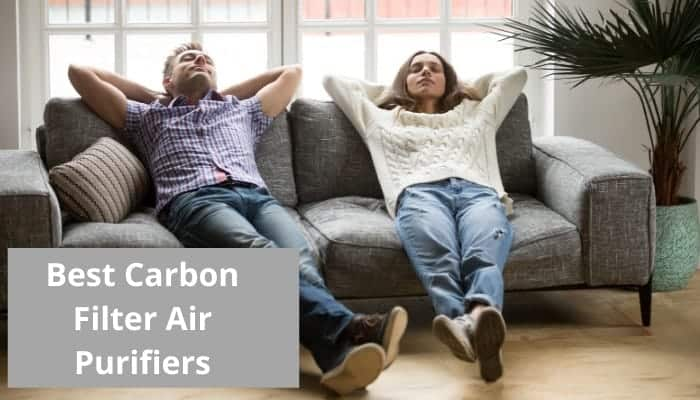 Top rated air purifiers with carbon filters