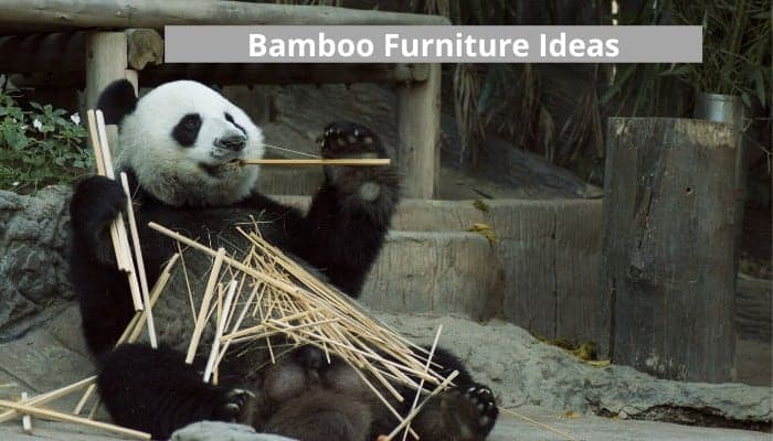 Bamboo decor ideas