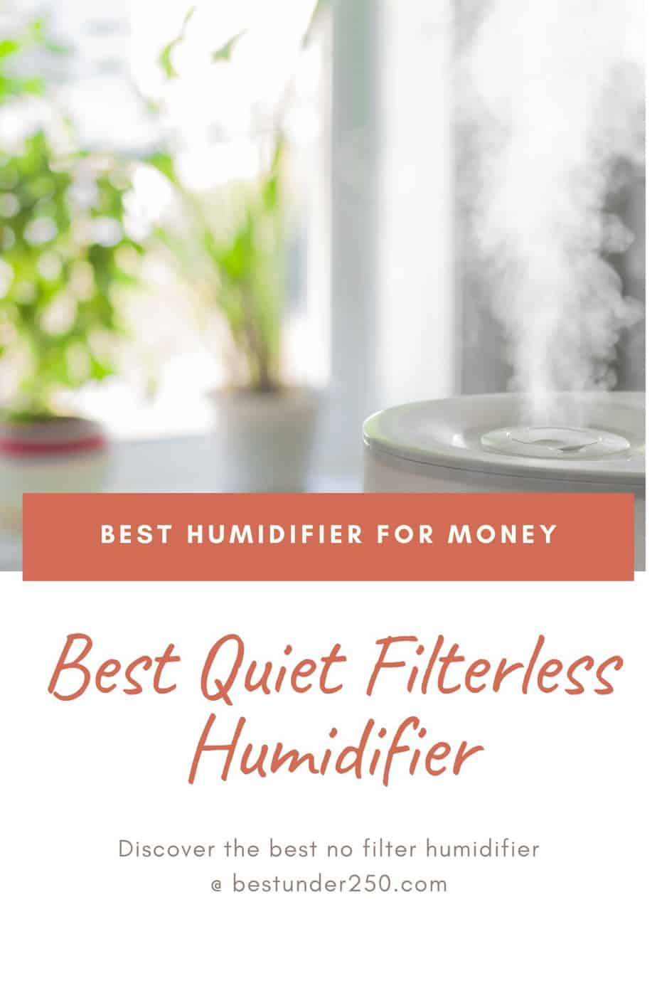 The best humidifier without a filter