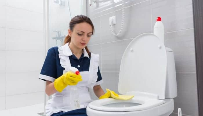 How to clean a toilet bowl with vinegar