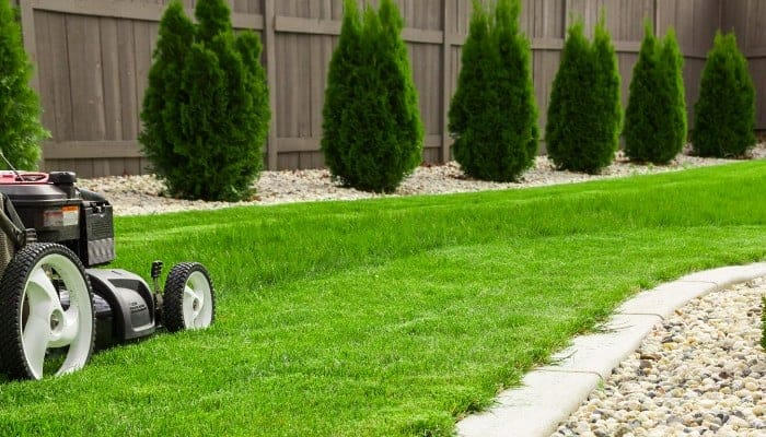 What does a mulching mower do