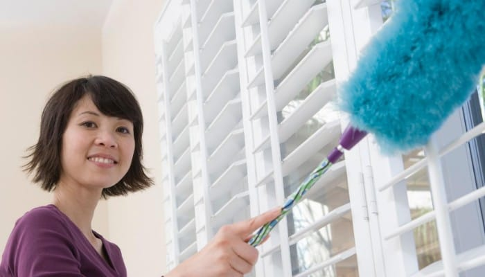 Removing dust from your home