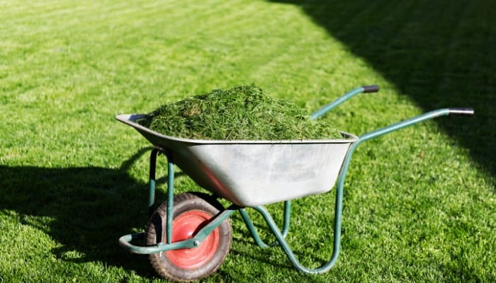 Keep your lawns looking great