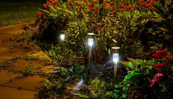 Best solar light brands