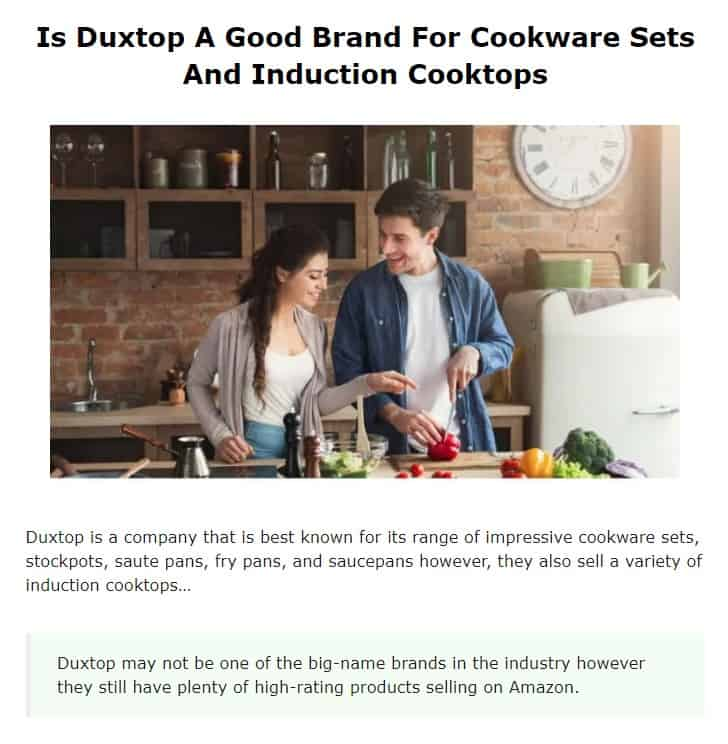 Duxtop is an excellent countertop appliance company