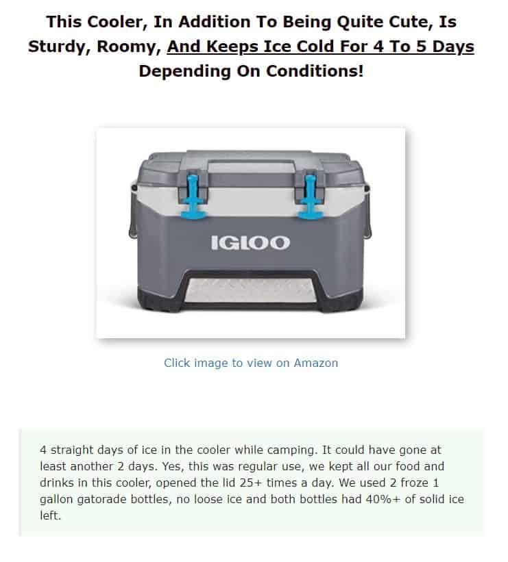Igloo is an excellent cooler brand