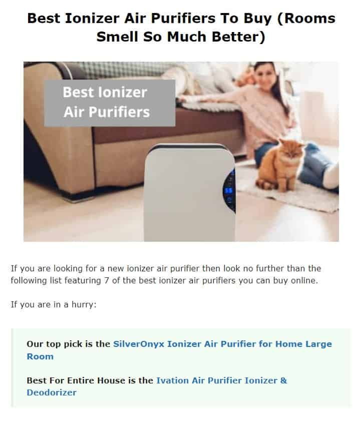 Silver Onyx is an excellent air purifier brand