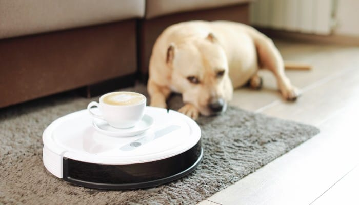 Are Ecovacs robot vacuums good?