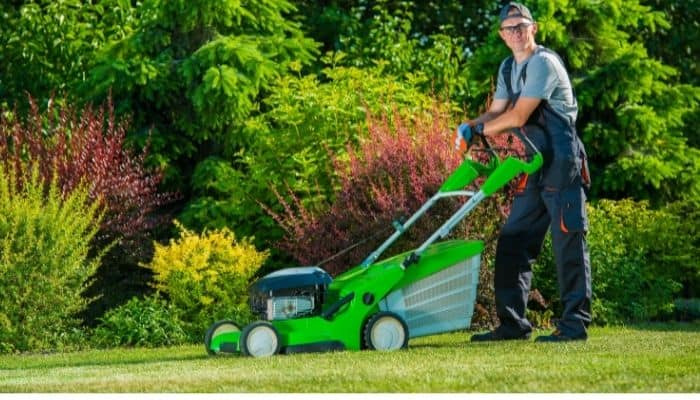 Is Worx a good brand for lawn and garden power tools?